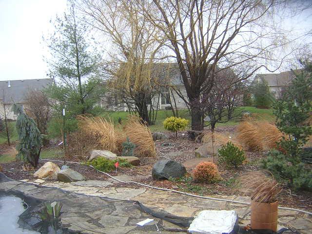 Diana's Garden 2
